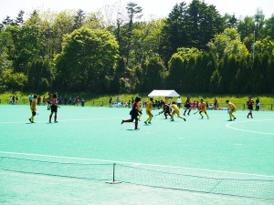 hockey-artificial-turf-002