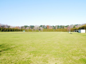 hockey-natural-grass-002